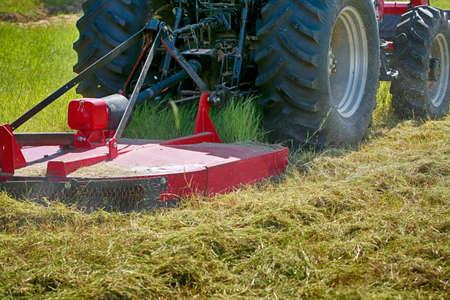 Großer roter moderner Traktor mäht das Gras auf dem Feld Standard-Bild - 95994990