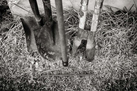 Black and white image of gardening tools.
