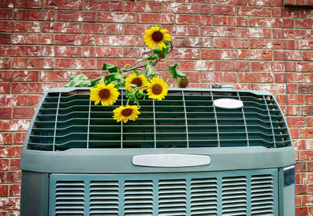 Close up of modern high efficiency air conditioner with wild yellow flowers. Bright HD image. Stock Photo - 150485829