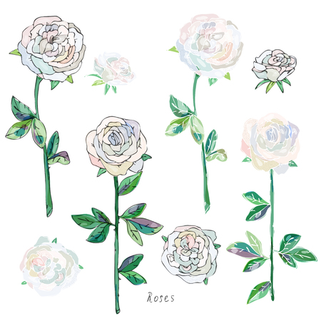 White, beige roses with green leaves and stems on a white background. Imitation of watercolor. Seamless pattern. Vector illustration. EPS10 일러스트