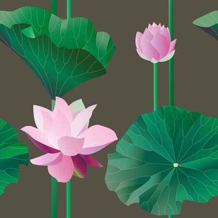 Two pink lotus on stalks with leaves on a brown background. Seamless pattern.Tropical flowers. Vector illustration, objects with transparency. Invitation, card.