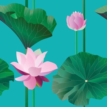 Two pink lotus on stalks with leaves on a blue background. Seamless pattern.Tropical flowers. Vector illustration, objects with transparency. Invitation, card.
