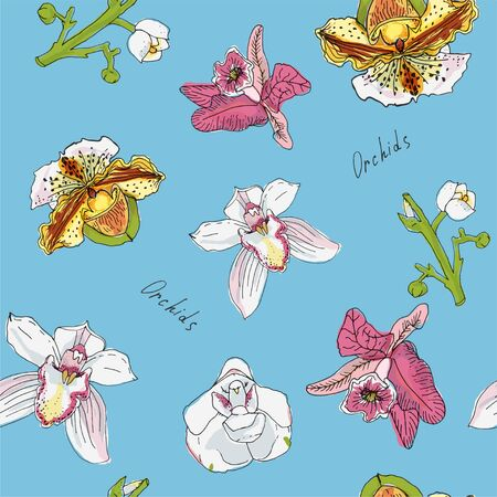 Flowers and branch of orchid vector illustration. Pink, green, blue, yellow color.