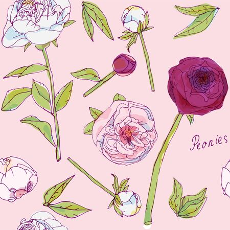 Leaves, stems and inflorescences of peonies vector illustration. Picture with pink, purple and white flowers. Endless pattern.