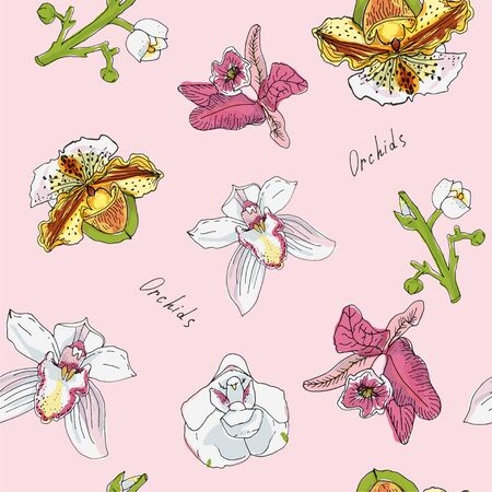 Flowers and branch of orchid vector illustration. Pink, green, blue, yellow color. Seamless pattern.