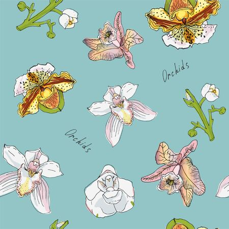 Flowers and branch of orchid vector illustration. Pink, green, yellow color. Seamless pattern of blue background.