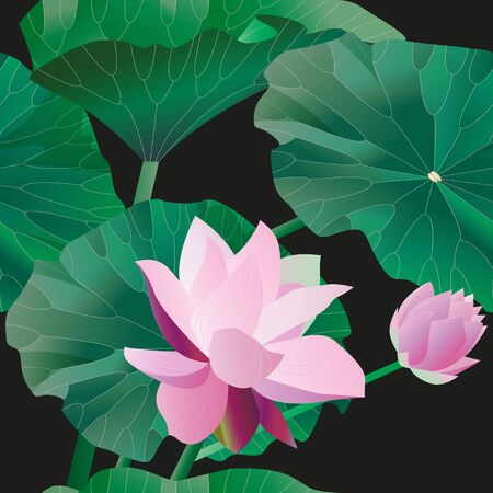 Two pink lotus on stalks with leaves on a black background. Seamless pattern.Tropical flowers. Vector illustration, objects with transparency. Invitation, card.