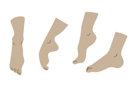A set of different feet. Vector illustration. All objects are grouped and isolated. EPS10