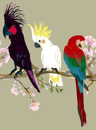 Three vibrant cockatoo parrots are sitting on tree branches in delicate pink flowers seamless vector illustration. Picture with exotic bird on beige, cream, tan color background. Endless pattern. EPS 10