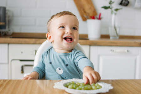 Charming little baby boy eating first food green grape at the bright kitchen at home