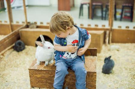 소년은 동물원 동물원에서 토끼와 놀아요.