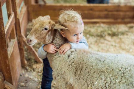 ovejitas: Niño de la muchacha que abraza el cordero en la granja Foto de archivo