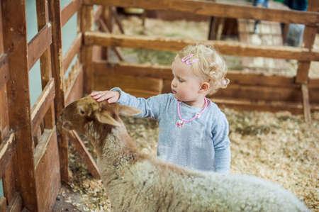 Meisje aaien een lam op de boerderij