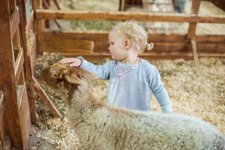 vivarium: Girl stroking a lamb on the farm