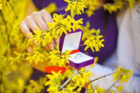 Capsule with a wedding ring on the spring flowering branch Stock Photo