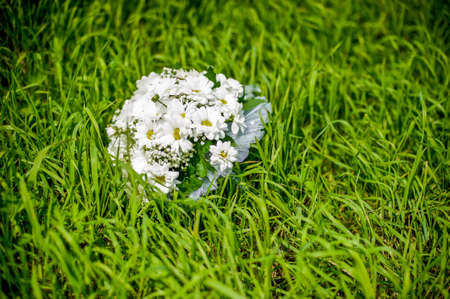 camomiles macro: Bouquet of daisies on green grass, the brides bouquet