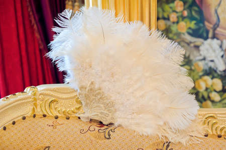 white fan: White fan of feathers on the back of the sofa