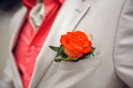 Red Rose boutonniere on white suit and red shirt Stock Photo