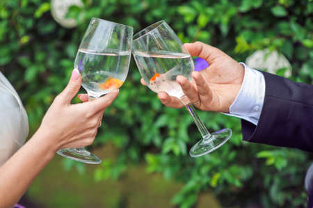 Bride and groom holding glasses with goldfish Wedding concept