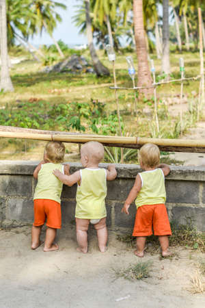 henhouse: Three baby Toddler looking through fence on the hens and roosters in the henhouse. The yellow shirts. Two boys and one girl Stock Photo