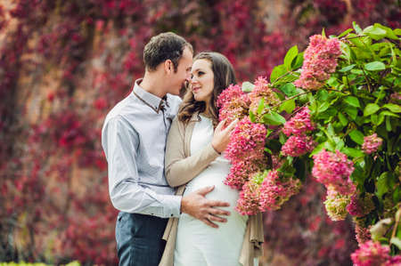 lovely pregnant woman: A pregnant young woman and her husband. A happy family standing at the red autumn hedge, smelling a flower hydrangea. pregnant woman relaxing in the park. Lovely prospective mother