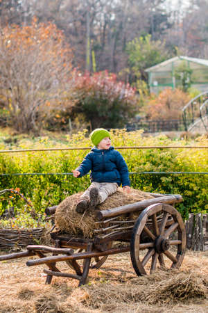 Old-fashioned little boy sitting at a vintage wooden carriage Boyhood Memories