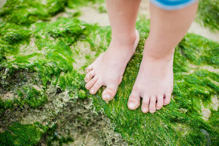 Childrens feet on the seaweed on the beach