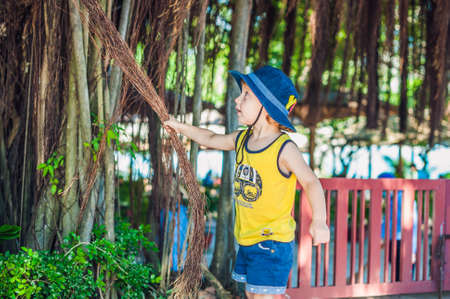 Boy on Vietnam traveler are on the background Beautiful tree with aerial roots. Asia Travel concept. Journey through Vietnam Concept.