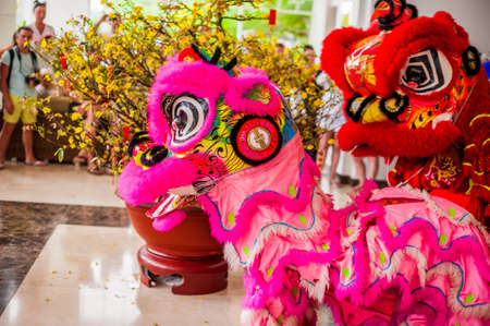 Lunar new year Asian dragon coming vietnamese new year.