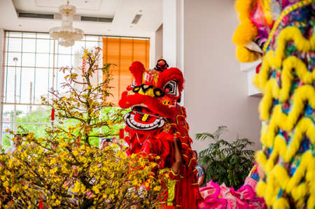 Lunar new year Asian dragon coming vietnamese new year.