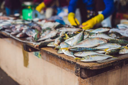 fish vendor: Fresh seafood on the Vietnamese market. Asian food concept.