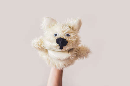 Puppet show dog on a gray background. Space for text or replicas. Stock Photo