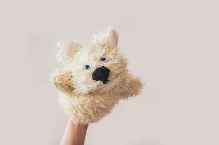 glove puppet: Puppet show dog on a gray background. Space for text or replicas. Stock Photo