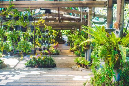 테라스로 이어지는 식물원에서 계단.