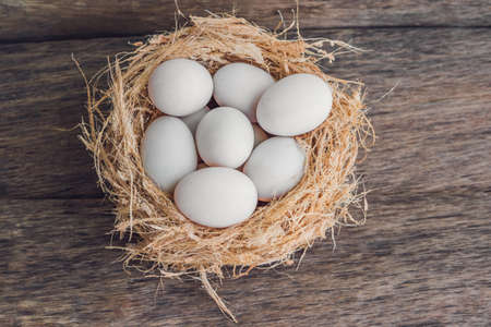 Easter white eggs in the nest. Easter concept. Stock Photo