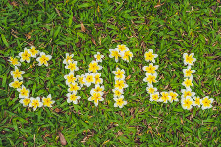 Inscription chill on the grass. Flowers frangipani.