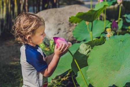 De jongen houdt een lotusbloem in zijn handen. Stockfoto