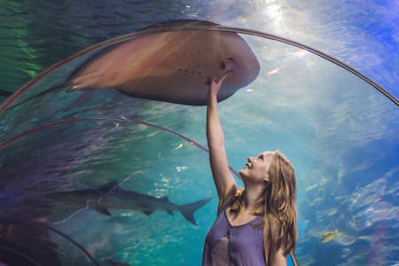 hard coral: A young woman touches a stingray fish in an oceanarium tunnel. Stock Photo