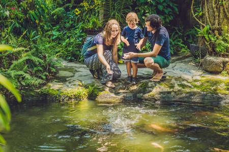幸せな家族が熱帯池でカラフルなナマズの餌。