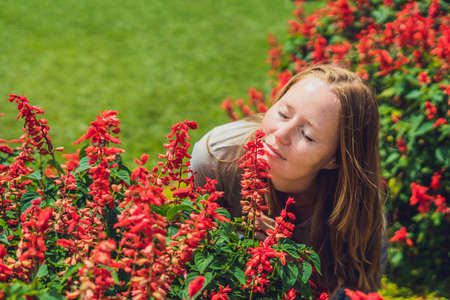 Young woman on the background of light Pink hydrangea flowers blooming in the garden Stock Photo