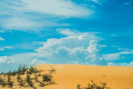 thar: Yellow sand in the desert, Mui Ne, Vietnam