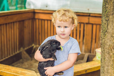 toddler girl caresses and playing with rabbit in the petting zoo. concept of sustainability, love of nature, respect for the world and love for animals. Ecologic, biologic, vegan, vegetarian. Stock Photo