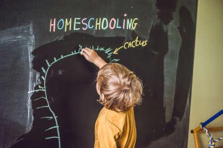 homeschooling: Homeschooling. Child pointing under word Homeschooling on a blackboard. Stock Photo