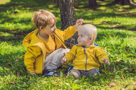 kiddies: Two happy brothers in yellow sweatshirts in the autumn park. Stock Photo