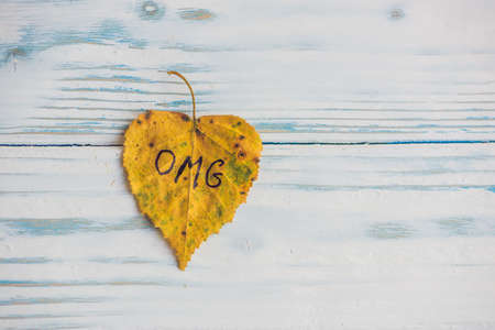 Yellow and green leaf with the inscription OMG on the old wooden background.