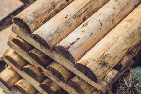 cut off saw: Folded in wooden piled beige beech boards, uneven bars background in a sawmill. Sawn-off boards. Stock Photo