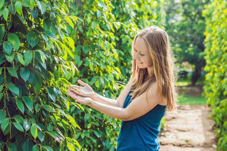Young woman on a black pepper farm in Vietnam, Phu Quoc.