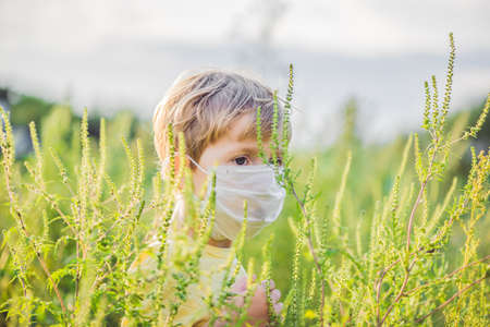 Boy in a medical mask because of an allergy to ragweed.
