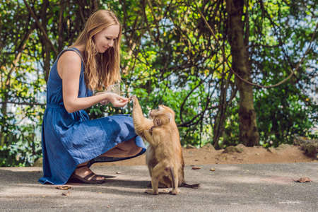 The Woman feeds the monkey whith nuts. Stock Photo