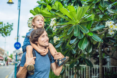 Dad and son sniffing group of yellow white flowers Frangipani, Plumeria on a sunny day with natural background. Stock Photo